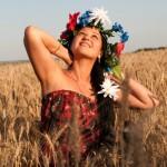 фото на закате пшеничное поле