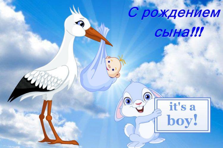 выписка из роддома видеооператор Артем Бездольный