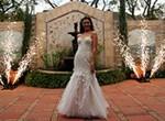 свадебный салют для свадебной фотосессии