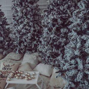 Зал MODERN PlayStudio новогодняя фотостудия новогодние фотосессии 2019 фотограф для новогодней фотосессии Киев Ирпень Буча 1