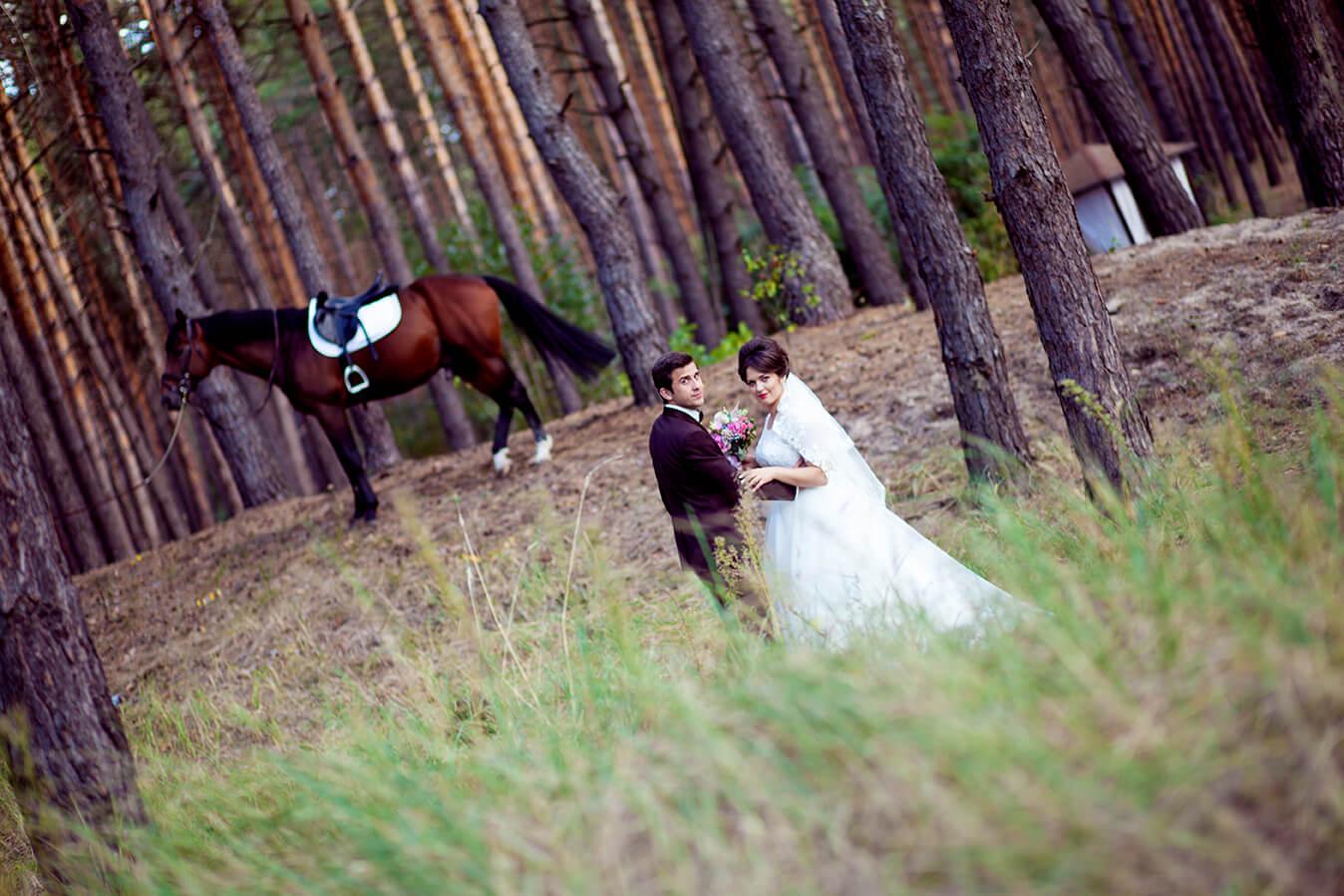 7-konnaja-fotosessija-kiev-semejnyj-detskij-svadebnyj-fotograf-9