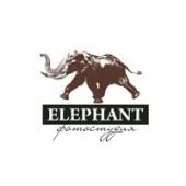 fotostudija-v-kieve-studija-elephant-16