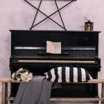 interernaja-fotostudija-pandora-kiev-zal-love-story-1
